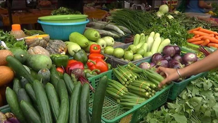 Vegetable_1H